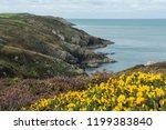 Pembrokeshire Coast  Wales  Uk  ...