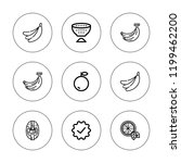 peel icon set. collection of 9... | Shutterstock .eps vector #1199462200