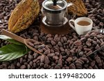 cocoa beans and cocoa fruits on ... | Shutterstock . vector #1199482006