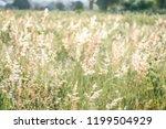 vintage retro flowers background | Shutterstock . vector #1199504929