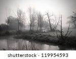 Calm River Running Through...
