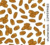 pecan. nut. sketch. color.... | Shutterstock . vector #1199599483