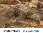 malin kundang  cursed man  ... | Shutterstock . vector #1199608939
