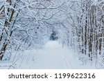 winter forest with snow and... | Shutterstock . vector #1199622316