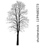 vector image of a black tree. a ... | Shutterstock .eps vector #1199680273