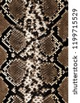 snake skin pattern texture... | Shutterstock . vector #1199715529