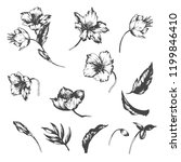 set of vector hand drawn...   Shutterstock .eps vector #1199846410