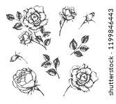 set of vector hand drawn...   Shutterstock .eps vector #1199846443