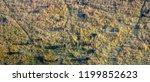 okavango delta  okavango...   Shutterstock . vector #1199852623