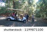 sandakan sabah  malaysia  ...   Shutterstock . vector #1199871100