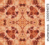 complex symmetrical seamless... | Shutterstock . vector #1200054073