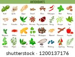 antioxidant food  herbs and... | Shutterstock .eps vector #1200137176