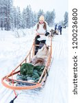 woman riding husky dog sled in... | Shutterstock . vector #1200236800