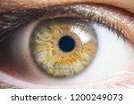 human eye detail   Shutterstock . vector #1200249073