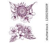 hand drawn illustration of...   Shutterstock .eps vector #1200250039