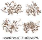 vector collection of hand drawn ... | Shutterstock .eps vector #1200250096