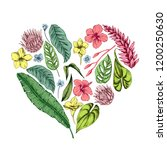 vector collection of hand drawn ...   Shutterstock .eps vector #1200250630