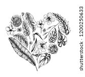 vector collection of hand drawn ... | Shutterstock .eps vector #1200250633