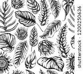 vector seamless pattern of palm ...   Shutterstock .eps vector #1200250636