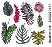 vector collection of hand drawn ...   Shutterstock .eps vector #1200250639