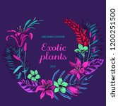 floral wreath of exotic plants...   Shutterstock .eps vector #1200251500