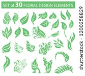vector stylish set of  floral... | Shutterstock .eps vector #1200258829