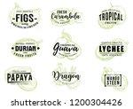 exotic fruits sketch lettering  ...   Shutterstock .eps vector #1200304426