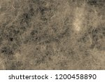 abstract fluffy texture of... | Shutterstock . vector #1200458890