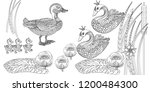 coloring pages. coloring book...   Shutterstock .eps vector #1200484300