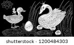 coloring pages. coloring book...   Shutterstock .eps vector #1200484303