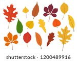 colorful autumn leaves... | Shutterstock .eps vector #1200489916