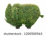 elephant tree isolated. | Shutterstock . vector #1200500563