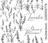 provence lavender seamless... | Shutterstock .eps vector #1200503776