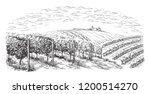 vine plantation hills  trees ... | Shutterstock .eps vector #1200514270