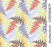 fern frond herbs  tropical... | Shutterstock .eps vector #1200586879
