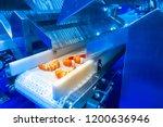 food production. shrimp on... | Shutterstock . vector #1200636946