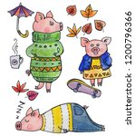 collection of pigs  pigs in... | Shutterstock . vector #1200796366