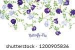 butterfly pea flowers in blue... | Shutterstock .eps vector #1200905836