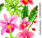 exotic flowers and leaves in... | Shutterstock . vector #1200920509