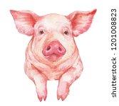 adorable little pink pig... | Shutterstock . vector #1201008823