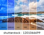 picture of a beach with... | Shutterstock . vector #1201066699