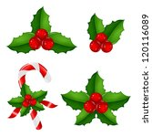 christmas holly berry set with... | Shutterstock .eps vector #120116089