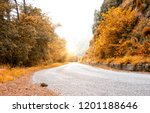 road in autumn forest | Shutterstock . vector #1201188646