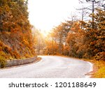 road in autumn forest | Shutterstock . vector #1201188649
