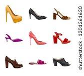vector design of footwear and... | Shutterstock .eps vector #1201261630