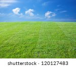 Green lawn with blue sky