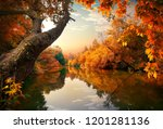 Orange Autumn On River In The...