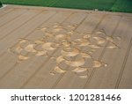 crop circle in a cornfield at... | Shutterstock . vector #1201281466