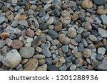cobbles in acadia national park   Shutterstock . vector #1201288936