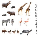 Collage of african animals in...
